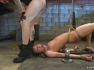 Babe rough flogged and assfucking humped